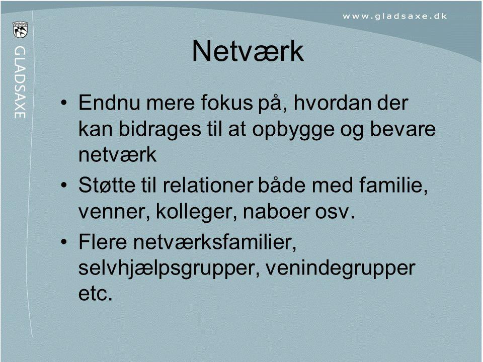 Netværk Endnu mere fokus på, hvordan der kan bidrages til at opbygge og bevare netværk.