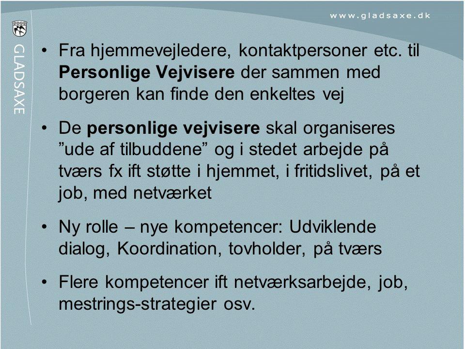 Flere kompetencer ift netværksarbejde, job, mestrings-strategier osv.