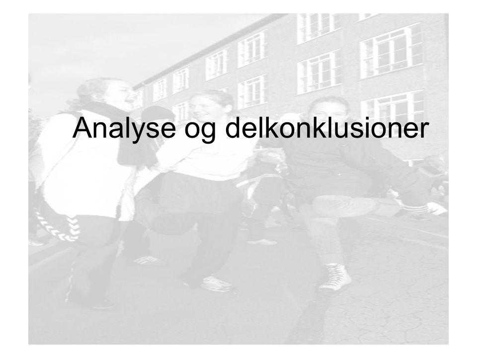 Analyse og delkonklusioner