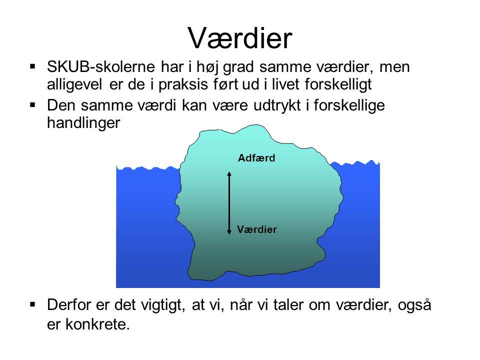 Værdier SKUB-skolerne har i høj grad samme værdier, men alligevel er de i praksis ført ud i livet forskelligt.
