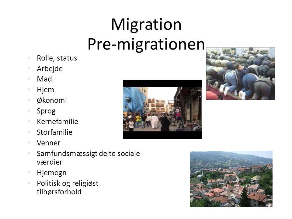 Migration Pre-migrationen