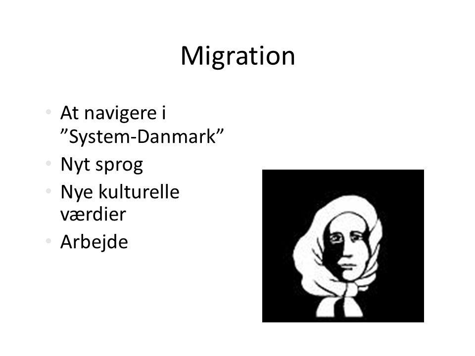 Migration At navigere i System-Danmark Nyt sprog