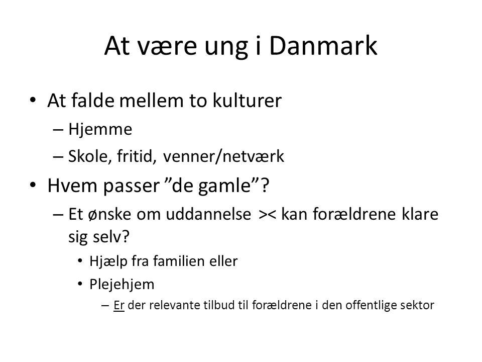 At være ung i Danmark At falde mellem to kulturer