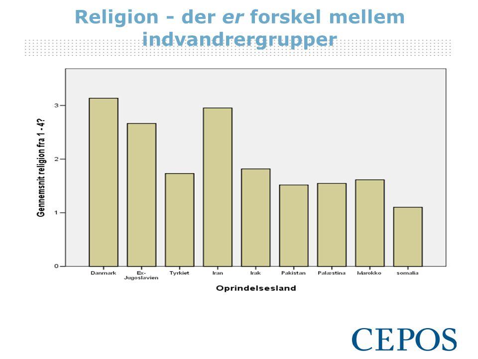 Religion - der er forskel mellem indvandrergrupper