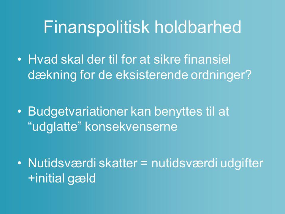 Finanspolitisk holdbarhed