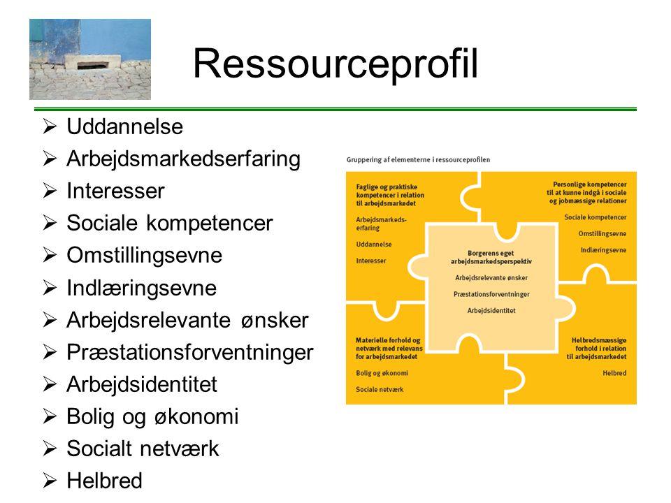 Ressourceprofil Uddannelse Arbejdsmarkedserfaring Interesser