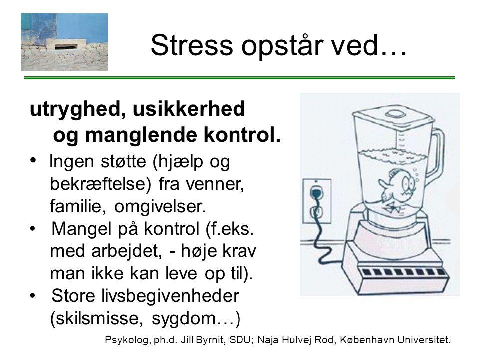 Stress opstår ved… utryghed, usikkerhed og manglende kontrol.