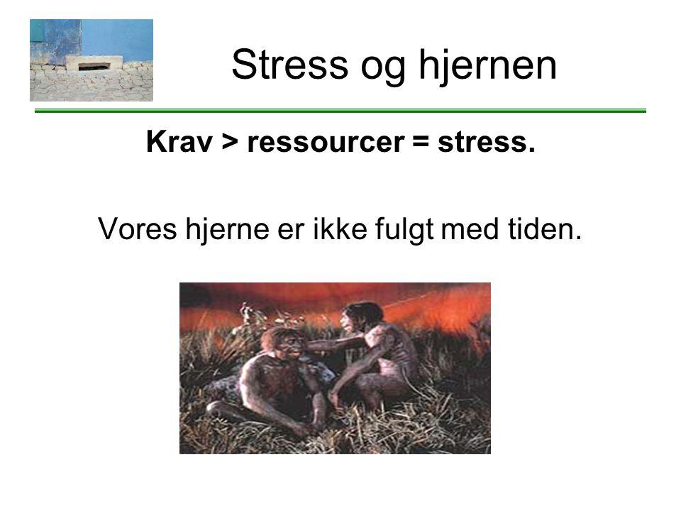 Krav > ressourcer = stress. Vores hjerne er ikke fulgt med tiden.