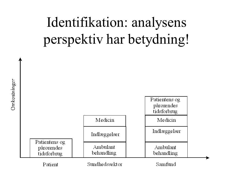 Identifikation: analysens perspektiv har betydning!