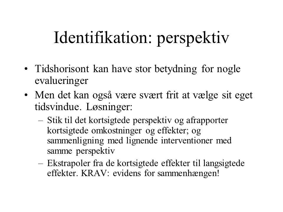 Identifikation: perspektiv