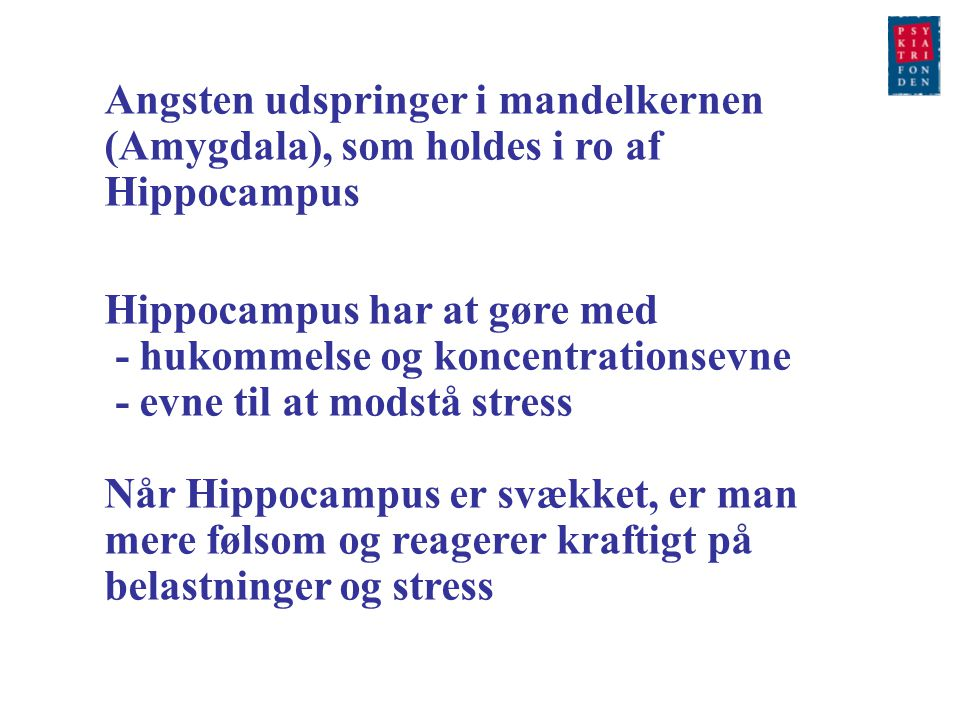 Angsten udspringer i mandelkernen (Amygdala), som holdes i ro af Hippocampus