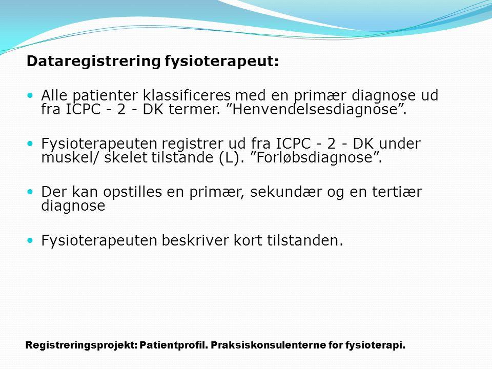 Dataregistrering fysioterapeut: