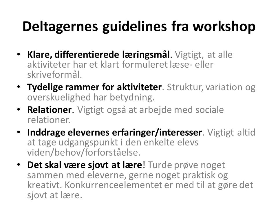 Deltagernes guidelines fra workshop