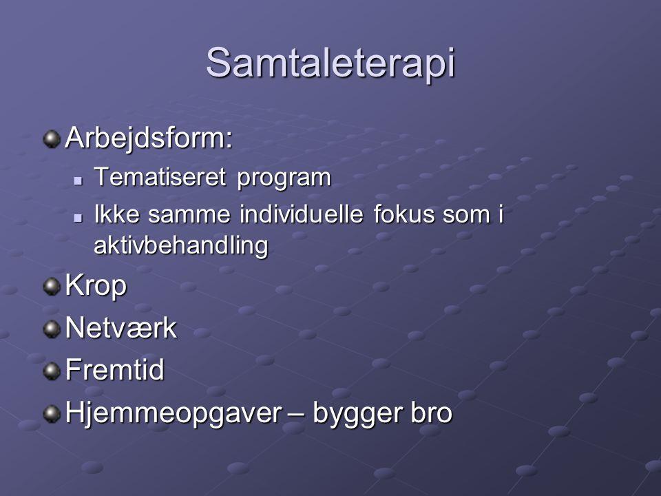 Samtaleterapi Arbejdsform: Krop Netværk Fremtid