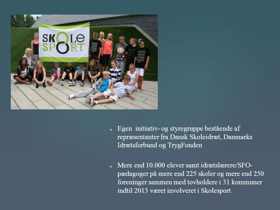 Egen initiativ- og styregruppe bestående af repræsentanter fra Dansk Skoleidræt, Danmarks Idrætsforbund og TrygFonden