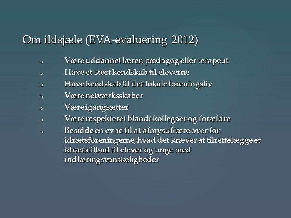 Om ildsjæle (EVA-evaluering 2012)