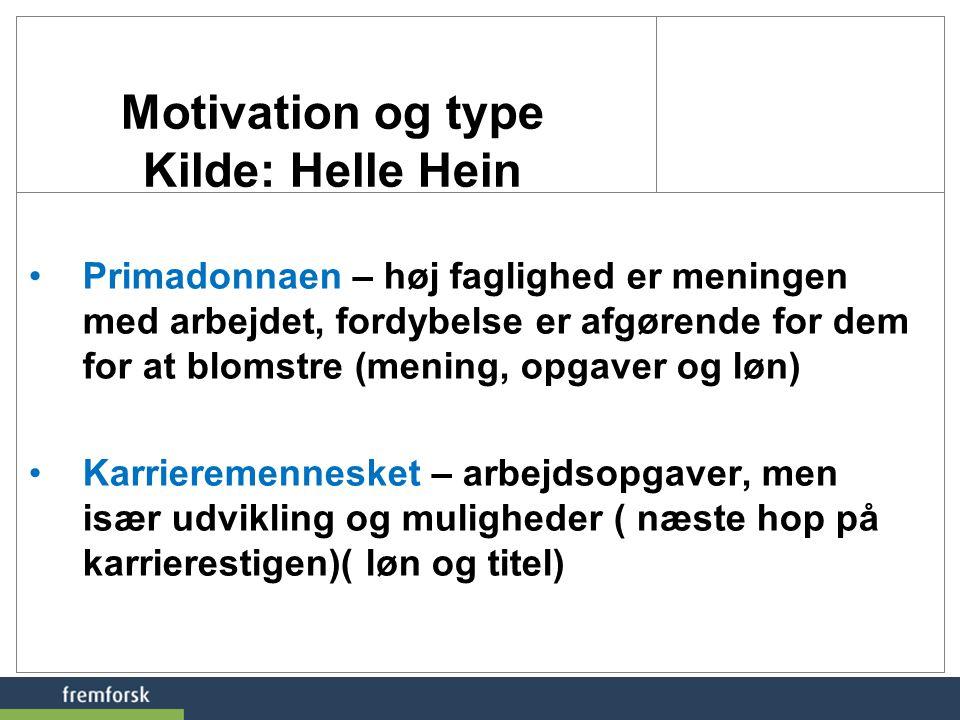 Motivation og type Kilde: Helle Hein
