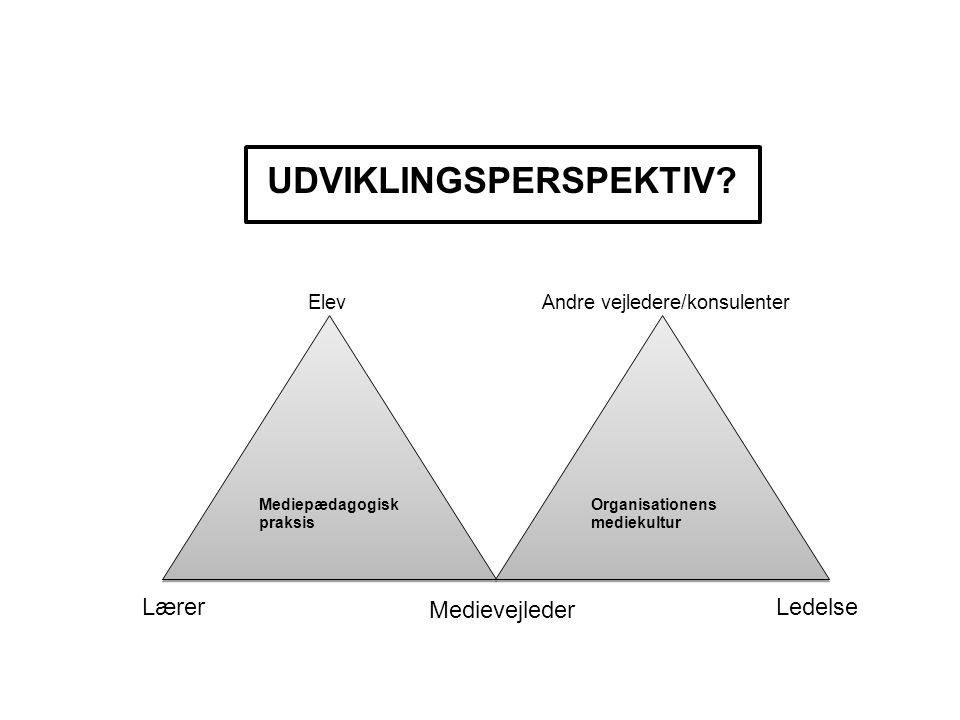 UDVIKLINGSPERSPEKTIV
