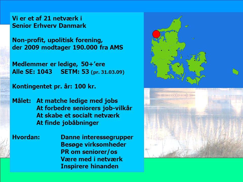 Vi er et af 21 netværk i Senior Erhverv Danmark. Non-profit, upolitisk forening, der 2009 modtager 190.000 fra AMS.