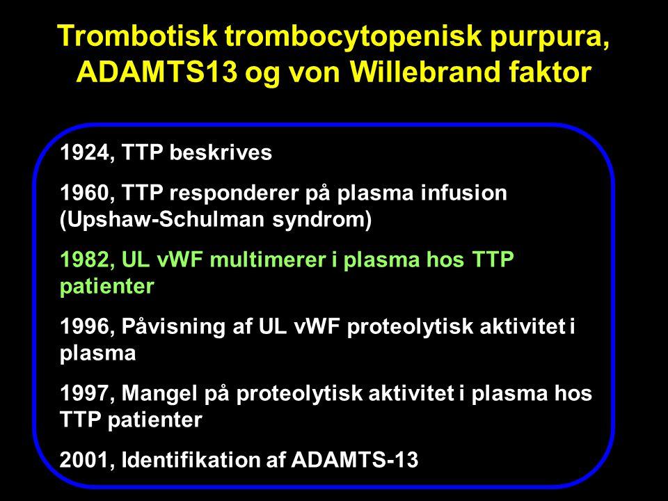 Trombotisk trombocytopenisk purpura, ADAMTS13 og von Willebrand faktor
