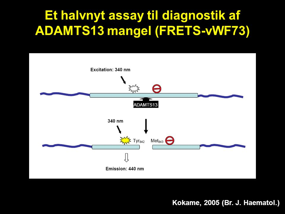 Et halvnyt assay til diagnostik af ADAMTS13 mangel (FRETS-vWF73)