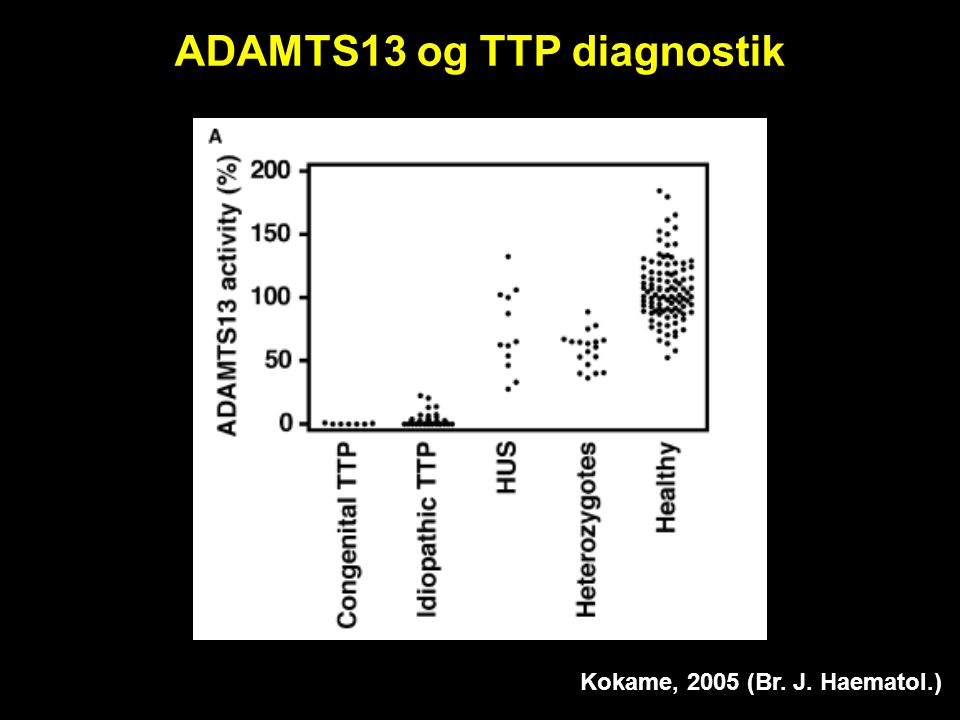 ADAMTS13 og TTP diagnostik