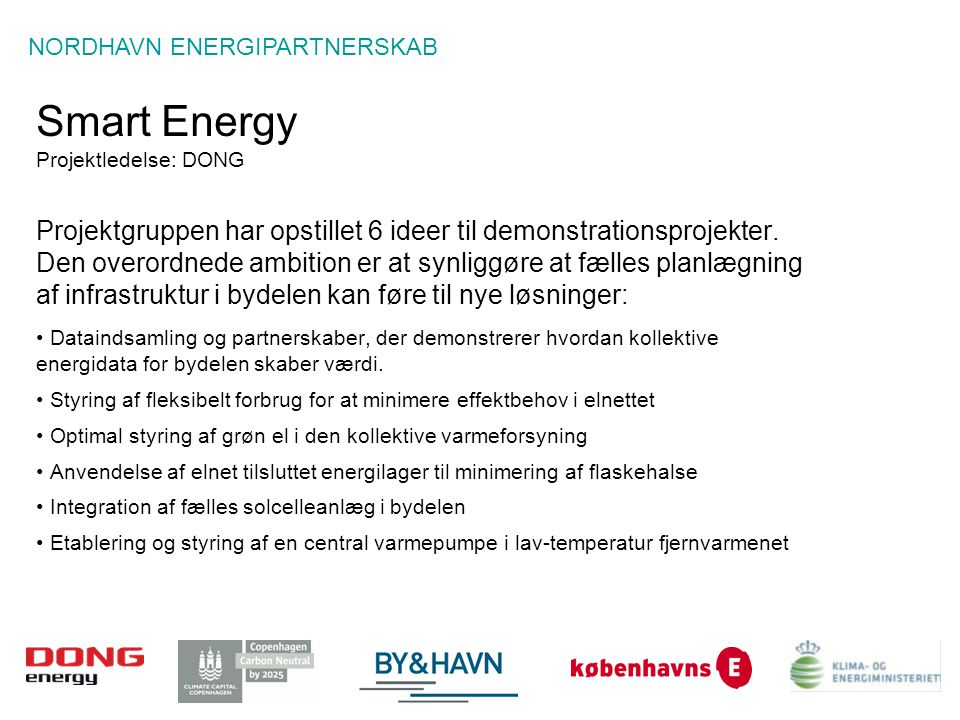 Smart Energy Projektledelse: DONG