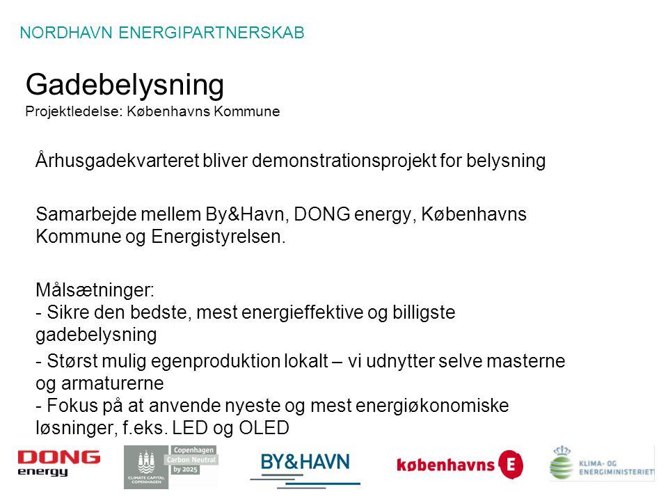 Gadebelysning Projektledelse: Københavns Kommune