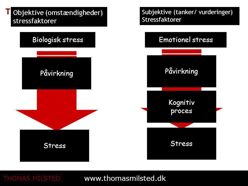 Objektive (omstændigheder) stressfaktorer