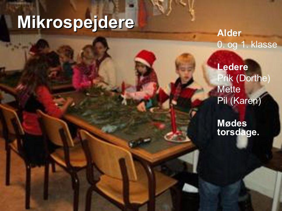 Mikrospejdere Alder 0. og 1. klasse Ledere Prik (Dorthe) Mette