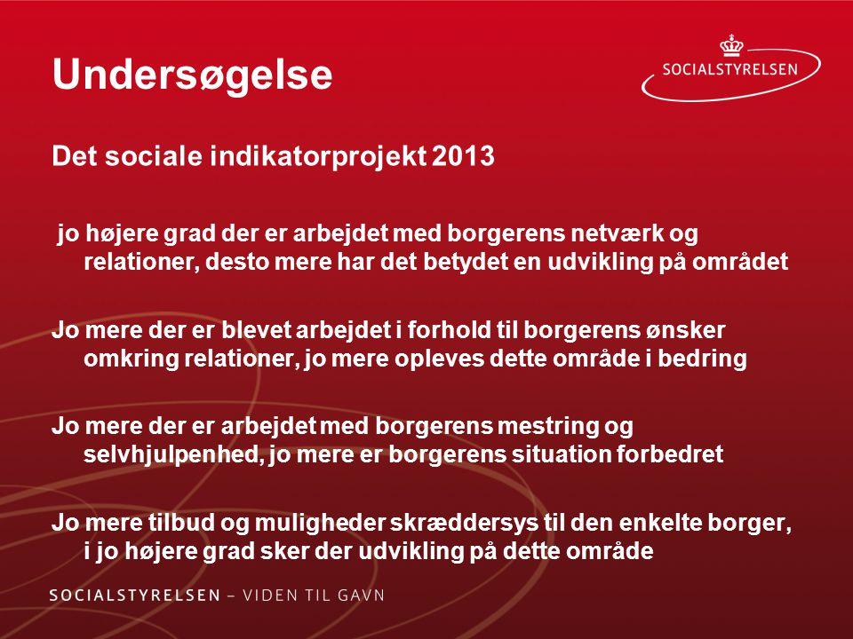 Undersøgelse Det sociale indikatorprojekt 2013