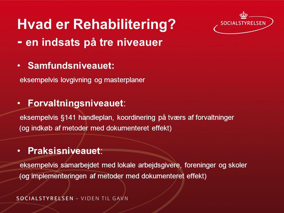 Hvad er Rehabilitering - en indsats på tre niveauer