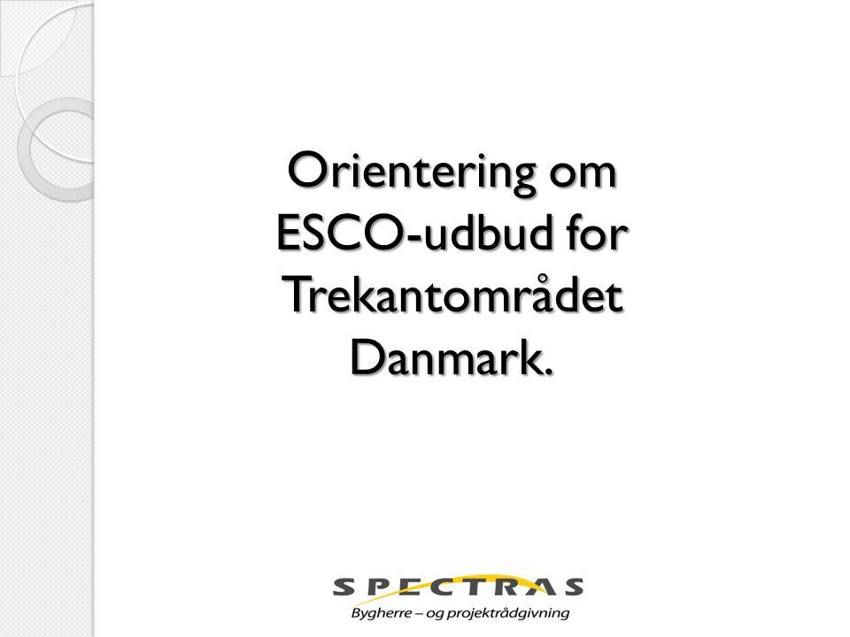 ESCO-udbud for Trekantområdet