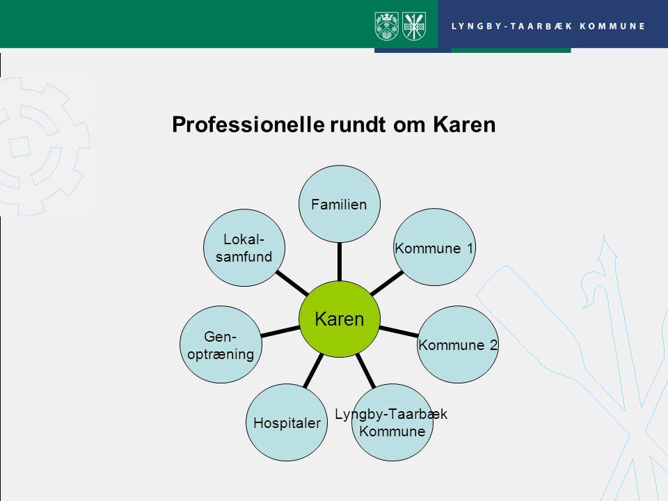 Professionelle rundt om Karen