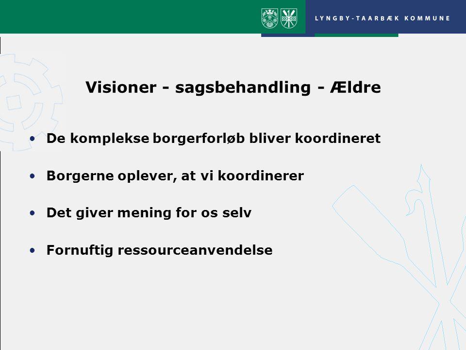 Visioner - sagsbehandling - Ældre