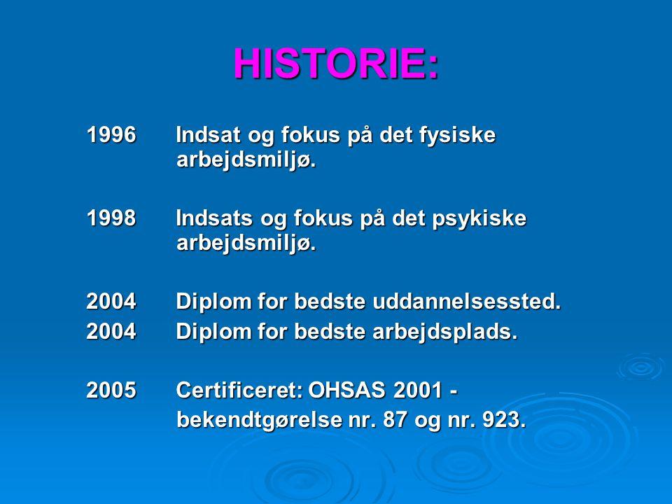 HISTORIE: 1996 Indsat og fokus på det fysiske arbejdsmiljø.