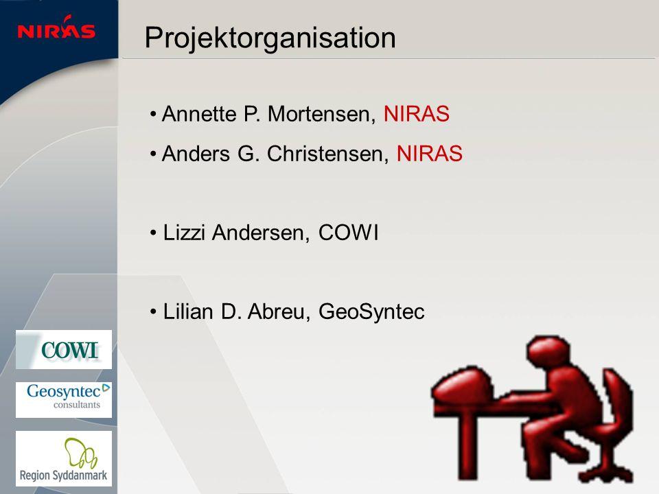 Projektorganisation Annette P. Mortensen, NIRAS