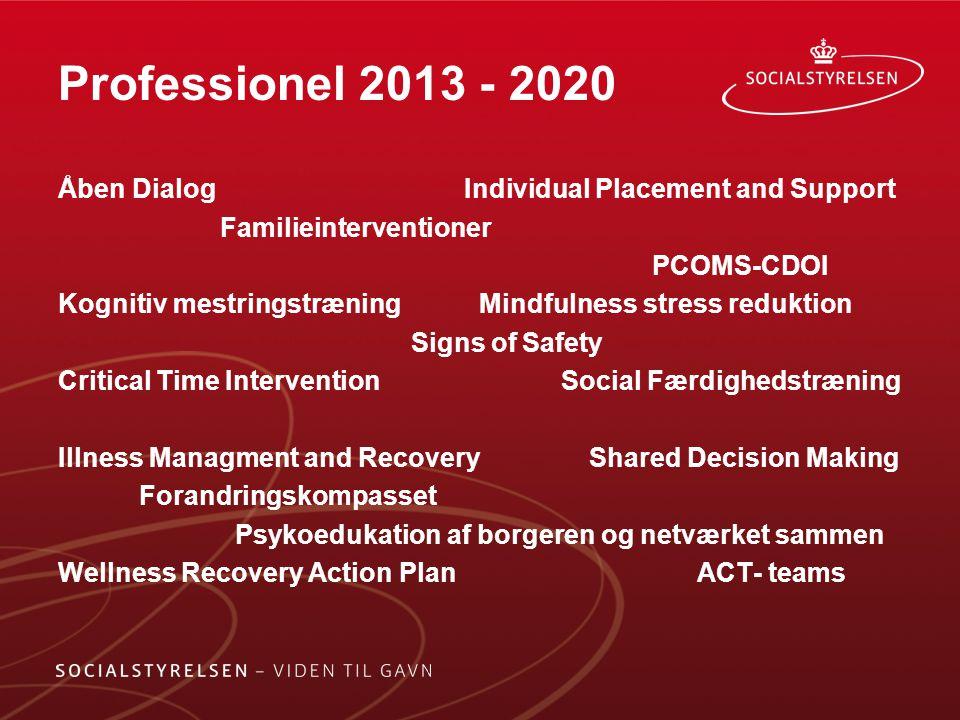 Professionel 2013 - 2020