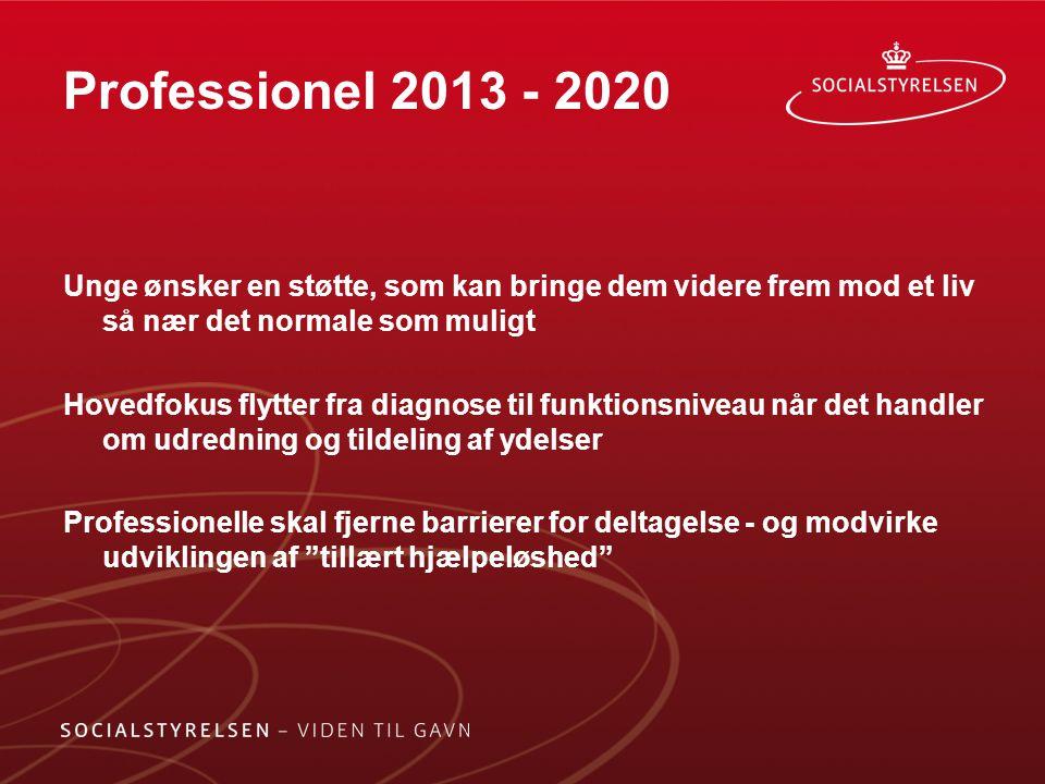 Professionel 2013 - 2020 Unge ønsker en støtte, som kan bringe dem videre frem mod et liv så nær det normale som muligt.