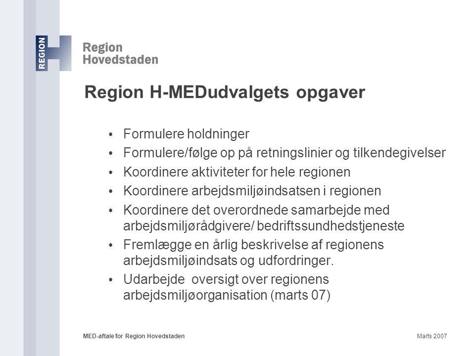 Region H-MEDudvalgets opgaver