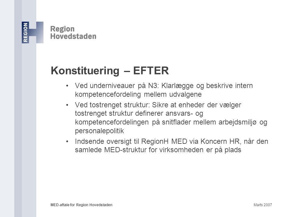 Konstituering – EFTER Ved underniveauer på N3: Klarlægge og beskrive intern kompetencefordeling mellem udvalgene.