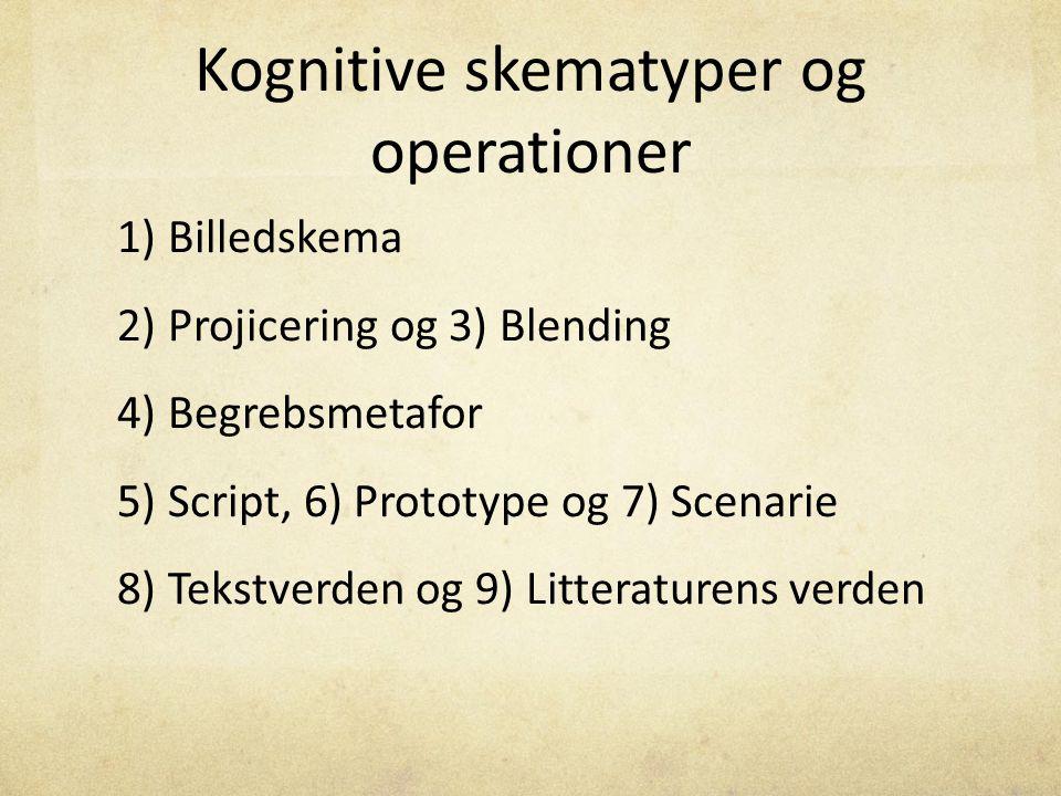 Kognitive skematyper og operationer