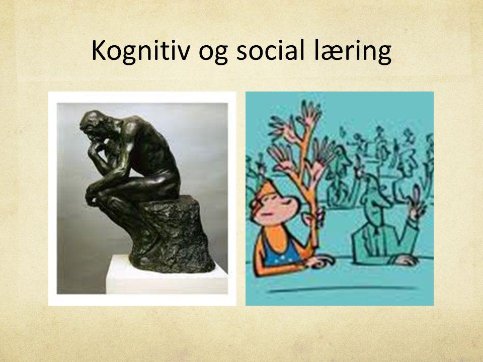 Kognitiv og social læring