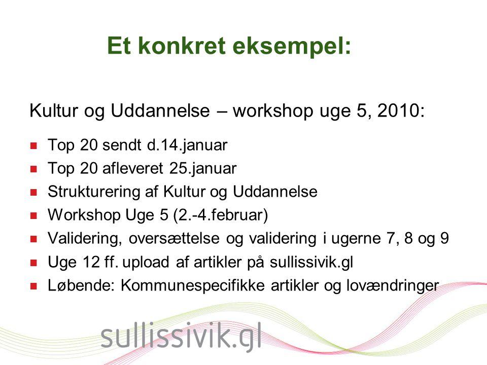 Et konkret eksempel: Kultur og Uddannelse – workshop uge 5, 2010: