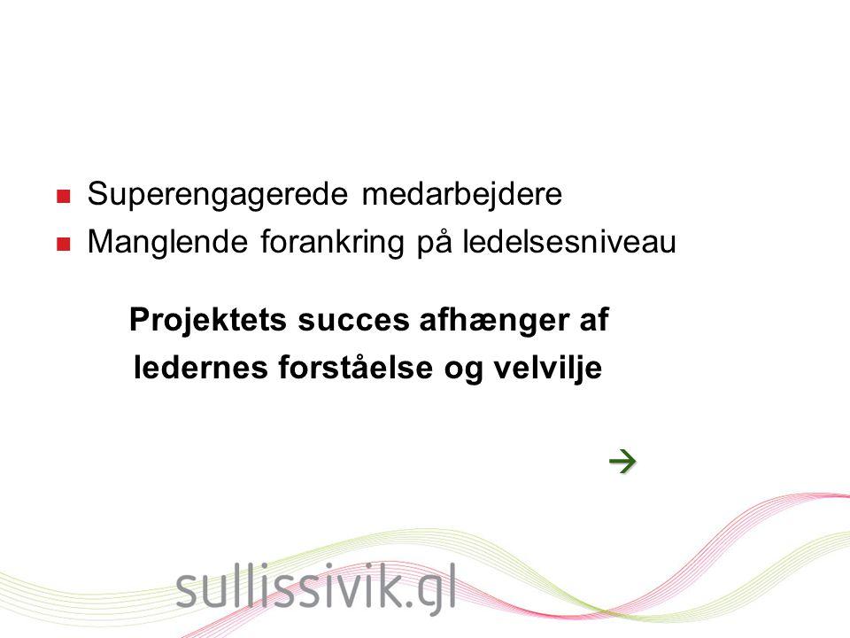Projektets succes afhænger af