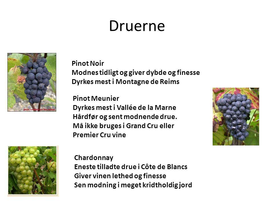 Druerne Pinot Noir Modnes tidligt og giver dybde og finesse