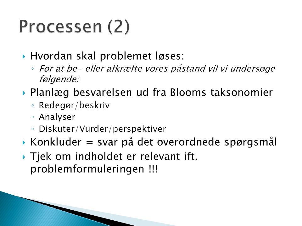 Processen (2) Hvordan skal problemet løses: