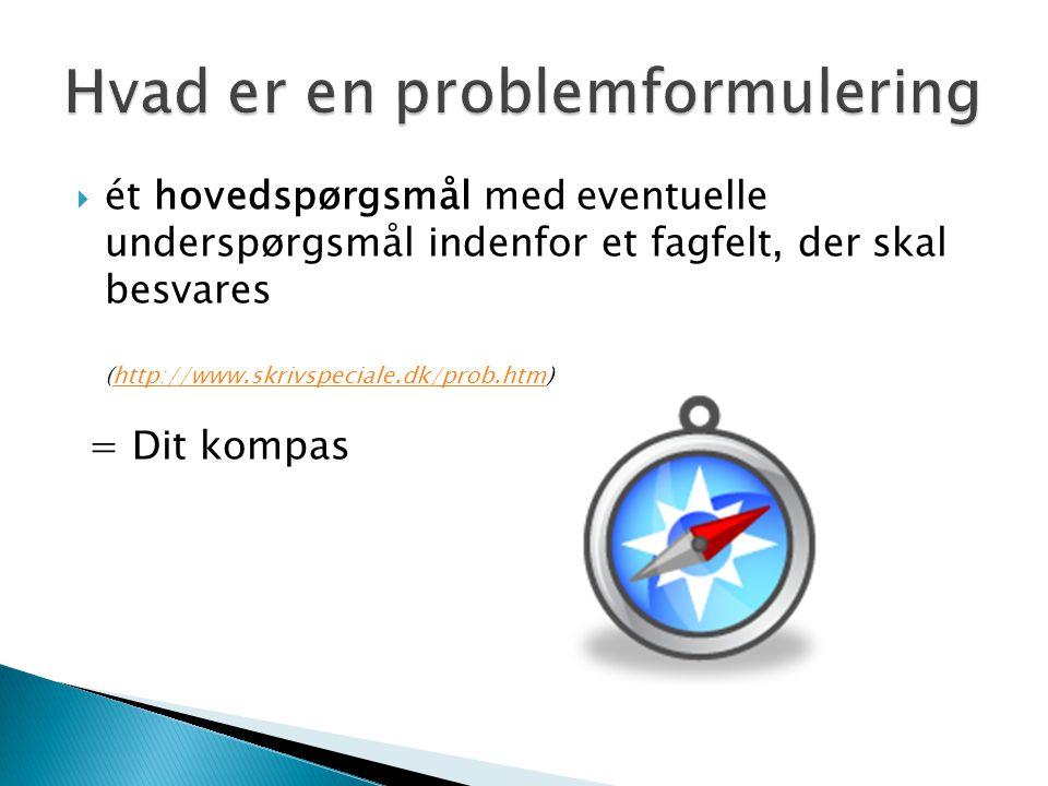 Hvad er en problemformulering