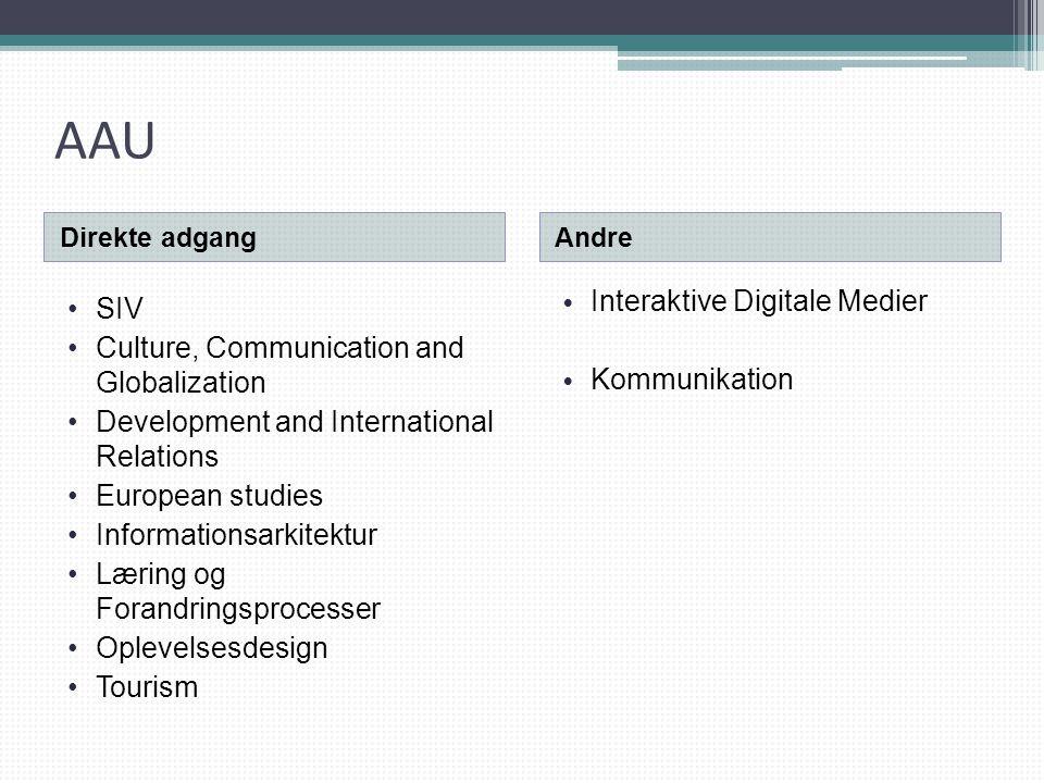 AAU Interaktive Digitale Medier SIV