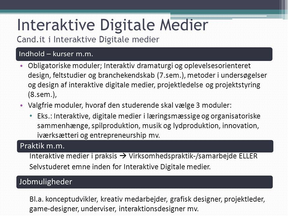 Interaktive Digitale Medier Cand.it i Interaktive Digitale medier